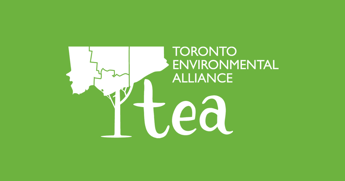 Environmental leader wanted!